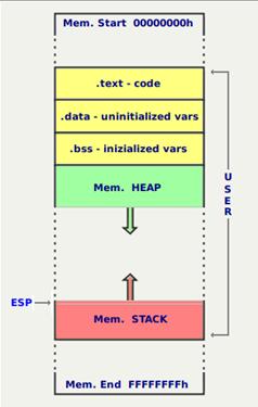 Struttura dati di un programma