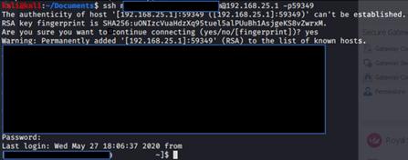 SSH connection established